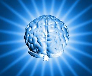 shiny-brain-1150907