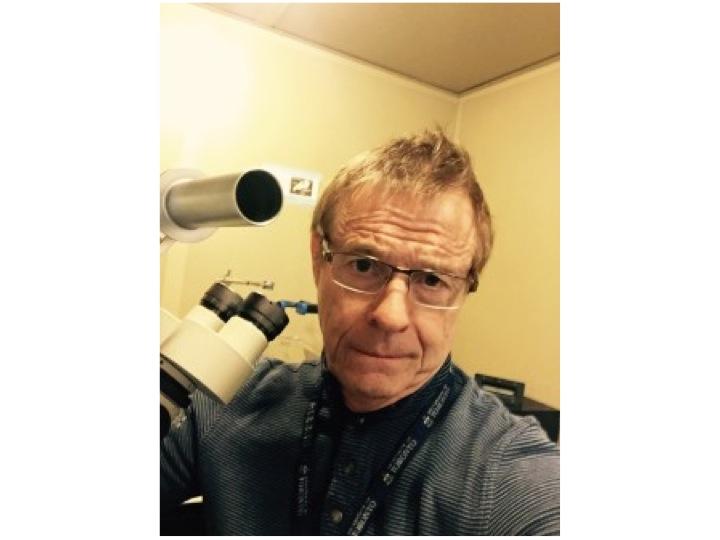 bob in the lab 2